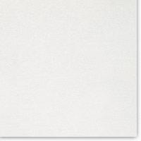 BURTON 1016-9016 (white)