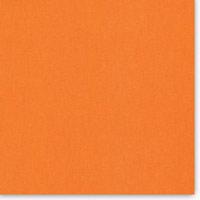 CHESTER 1007-2003 (orange)