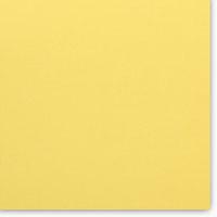 CHESTER 1007-1016 (lemon)